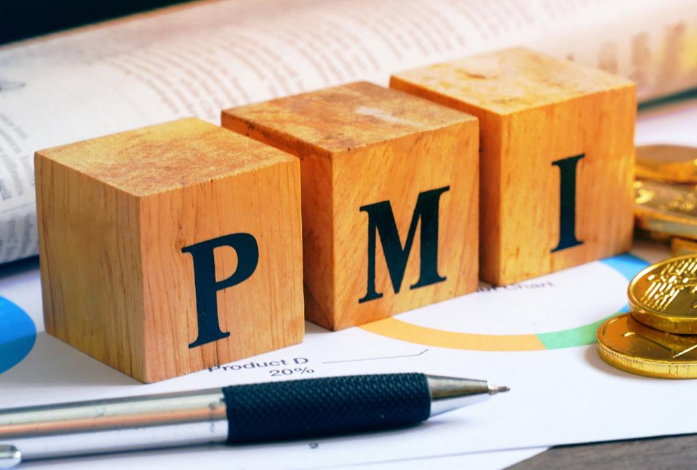 PMI reaches record low